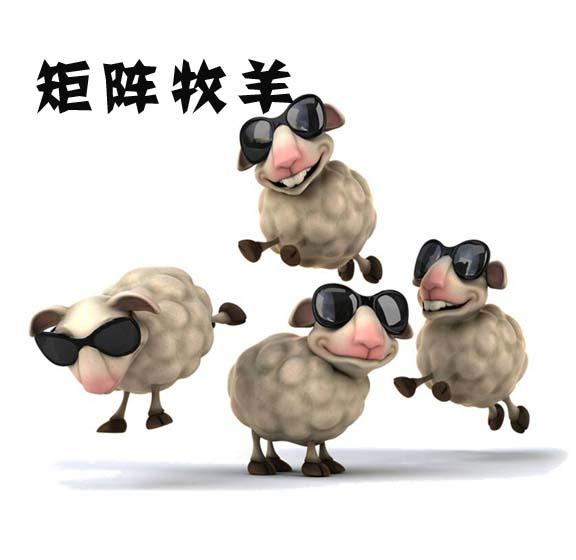 矩阵牧羊室内拓展训练课程