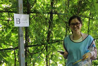 北京拓展项目之孤岛求生